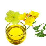 Olio organico puro del jojoba con il campione libero;