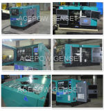 générateurs diesel de 12kw/15kVA Ricardo avec l'ATS