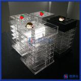 아크릴 립스틱 대를 회전시키는 중국 도매 새로운 디자인