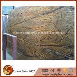 Bramma di marmo inclusa del Brown della foresta pluviale