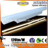 I nuovi indicatori luminosi T5 hanno brevettato le lampade T5
