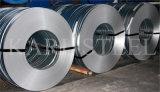 201 enroulements d'acier inoxydable
