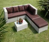 Sofà esterni di svago di modo di vimini esterno della mobilia (2908)