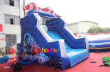 Sea World Theme Toboggan d'eau gonflable pour parc d'attractions (CHSL560)