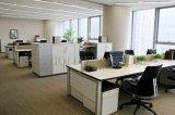 Divisorio basso laterale dell'ufficio del comitato di vendita due dei cubicoli dell'ufficio (SZ-WST737)