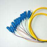 De alta calidad Sm SC / PC 12f de fibra óptica Pigtail