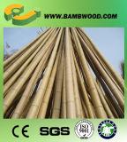 Bon marché et Polonais en bambou d'acajou teints par qualité