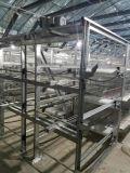 Polla automática pollo jaula de un marco con el certificado de ISO9001