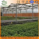 Hangend Type die Irrigatie voor Serre bestrooien
