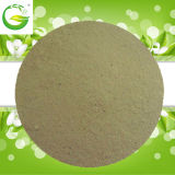 Pflanze und Vegetable Source Free Amino Acid Powder 40-80%
