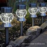 세륨 스테인리스 태양 정원 말뚝 빛 (RS110)