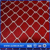 Sale에 각종 Good Quality Chain Link Fence
