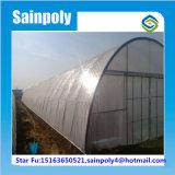 Estufa plástica do túnel do PE grande para tomates da agricultura