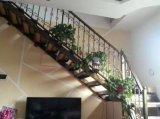 Corrimão requintados pré-fabricados da escadaria do ferro