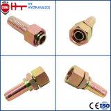 China-Fabrik-Zubehör-heißer geschmiedeter Edelstahl-Rohrfitting-hydraulischer Schlauch-Verbinder