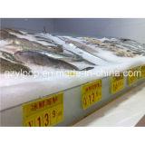 De plastic Raad van het Teken van de Prijs voor de Verse Vertoning van de Bevordering van Vissen