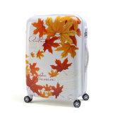 Цветастый багаж для перемещения и располагаться лагерем