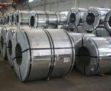Tiras laminadas do aço nas bobinas