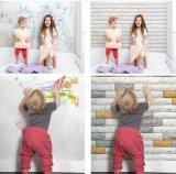 Painel de parede Moisture-Proof ambiental da placa da espuma de XPE