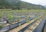 Barrière tissée neuve de lutte contre les mauvaises herbes du PE 2017 pour le jardin d'agriculture