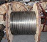 Tuyauterie enroulée d'acier inoxydable d'AISI304L