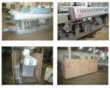 Machine van het Glas van de Rechte Lijn van de Vervaardiging van China (van yard-em-9) de Scherpende
