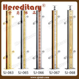 Крытый Railing нержавеющей стали и древесины стеклянный (SJ-613)
