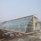 Usine 2017 de la Chine vente la serre chaude de film de toit de zigzag la meilleur marché