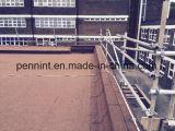 中国の良質Sbs/APPは中国の工場に直接によって膜を防水する