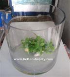 Cilindros de plástico de plexiglass transparentes personalizados