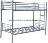 Schulmöbel-Kursteilnehmer, die Metallkoje-Bett anstreichen
