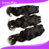 자연적인 Wave 브라질 Virgin Remy Hair Extension (w-074)