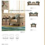 Meubles néoclassiques de sofa de salle de séjour de type