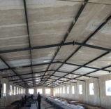 Edifício Prefab barato de exploração agrícola/casa de galinha da construção de aço