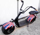 Harley 바닷가 함 뚱뚱한 타이어 전기 자전거
