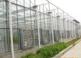 Estufa de vidro do projeto moderno para o jardim da colheita com sistema do ajuste