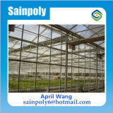 Easilly Installed Glass Greenhouse für Agricultural