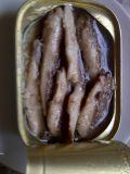 Venda quente enlatada da sardinha dos peixes/alimento enlatado de /Canned dos peixes