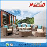 Muebles al aire libre del patio del marco de la alta calidad de la rota de aluminio del PE