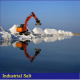 Het overzeese Zoute Industriële Zoute Natrium-chloride van Kopers