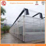 PC Sheet Aluminium Green House para Agricultura / Comercial