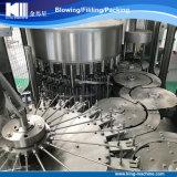 Tipo rotativo riga completa dell'imbottigliamento puro minerale dell'acqua