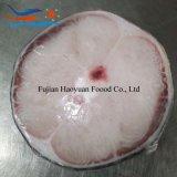 ヨシキリザメSteak&#160のシーフードの工場によってフリーズされる皮;