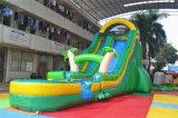 Diapositiva de agua inflable del tema tropical del precio bajo con la piscina