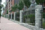 Rete fissa nera industriale residenziale decorativa elegante 69 di alta qualità di Haohan