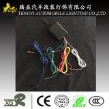 Regolatore automatico del regolatore della luminosità dell'indicatore luminoso di girata dell'automobile LED