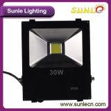 暖かい白30のワット屋外LEDの洪水ライト(SLFIの穂軸30W)