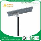 옥외를 위한 높은 루멘 80W LED 태양 빛 정원 또는 거리 또는 도로