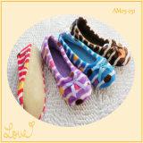 Sapatos de dança de balé bonitos bonitos das senhoras com bowknot