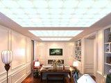 Plafond polymère de vente populaire de type simple - bâti givré d'or